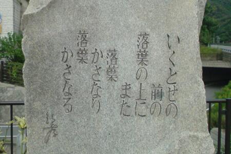 SN3D0173.JPG